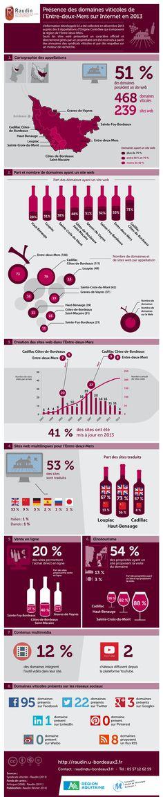 RAUDIN (Recherches Aquitaines sur les Usages pour le Développement des Dispositifs Numériques) : présence des domaines viticoles de l'Entre-Deux-Mers sur Internet en 2013