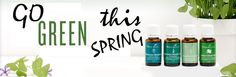 Fresh, green essential oils to welcome Spring. Our bodies need spring cleaning too!
