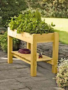 potager en hauteur et table en bois