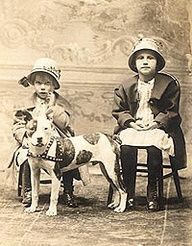 """In early America, the dogs were valued for much more than their fighting abilities. They were entrusted to protect homesteads from predators and worked as vital helpers on family farms. Homesteaders depended on their abilities to help in hunts and as hog catchers (hence, the common title """"catch dogs""""). They were constant companions to the young children who were entrusted in their care. Pit bulls earned their place as an important part of the fabric of a developing nation…"""