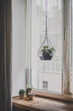 Small hanging teardrop terrarium Succulent flowerpot