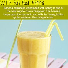 Best drinks to cure your hangover - WTF fun facts