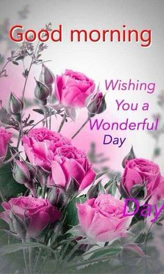 Good Morning And Wish You A Wonderful Day