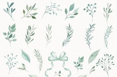 Watercolor green leaves by designloverstudio on @creativemarket