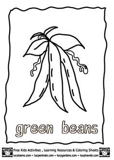 Vegetable Coloring Pages Growing Green Beans,Lucy Free Vegetable