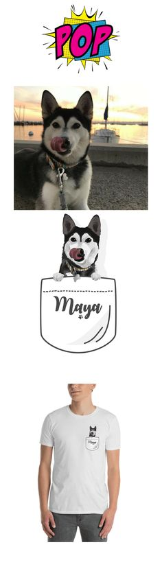 Husky (Maya) and his portrait from Pop-square #portrait #popsquare #puppy #husky | portrait photography | portrait painting | portraits | vector |