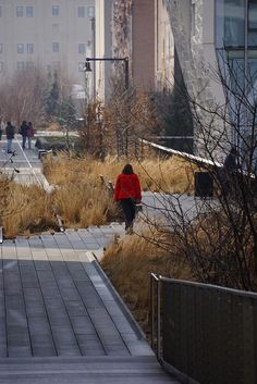 Luxury The High Line NYC Click image to enlarge via Adam Woodruff Associates and