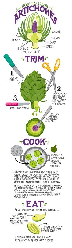 Great diagram! This is even better when you mix Italian bread crumbs, salt, pepper, garlic salt, and mix in olive oil to make a bread crumb paste. Stuff the bread crumb mixture into the heart of the artichoke and between the leaves. Cook as directed, eat as directed but also enjoy the satisfying garlicky crunch of the bread crumbs :)