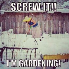 This is how I feel in late April/May. Over 6 months without gardening is painful!