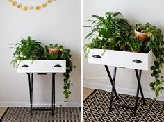 Creative Ways to Recycle Your Old Drawers 15 Creative Ways to Recycle Your Old Dresser Drawers-Drawer Plant Creative Ways to Recycle Your Old Dresser Drawers-Drawer Plant Stand Furniture Makeover, Diy Furniture, Tv Tray Makeover, Chair Makeover, Furniture Refinishing, Furniture Projects, Garden Furniture, Bedroom Furniture, Old Drawers
