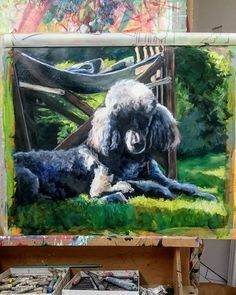 Work in progress. William the indestructible poodle