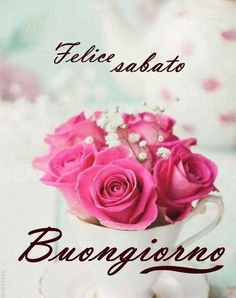Good Morning, Rose, Day, Phrases In Italian, Messages, Smile, Buen Dia, Pink, Bonjour