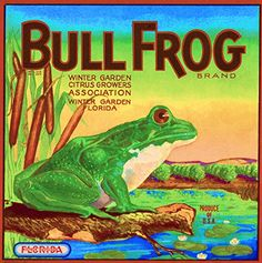 Winter Garden, Florida - Vintage Bull Frog Brand Frog Ora...