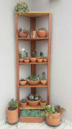 Garden Wall Designs, Vertical Garden Design, House Plants Decor, Plant Decor, Wooden Plant Stands Indoor, Indoor Cactus Plants, Tiny Garden Ideas, Small Balcony Decor, Wall Decor Design