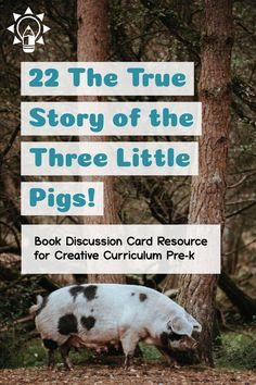 22 True Story of 3 Little Pigs! Pre K Activities, Speech Therapy Activities, Language Activities, Reading Activities, Teaching Strategies Gold, Teaching Ideas, Early Childhood Activities, Inclusion Classroom, Social Emotional Development