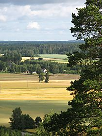 The view from a hill close to Keltainen Talo / The Yellow Country House in Pälkäne, Finland.