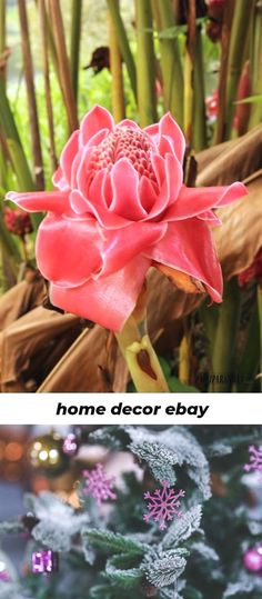 Home Improvement Project Ideas Intend to make your household feel