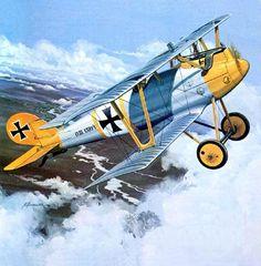 1917 Pfalz DIII Jasta 10
