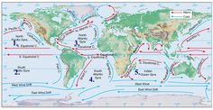 Atlantic Ocean Currents Map solved using the maps of the ocean wind figure 1 and cu 1025 X 526 pixels - Ideas of where to see Geography Map, Physical Geography, Earth Science, Science And Nature, Ocean Currents Map, Scientific Poster Design, Ocean Sailing, Science Notes, Africa Map