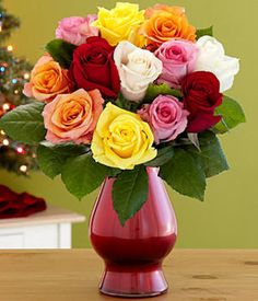 One Dozen Rainbow Roses and other flowers & plants at ProFlowers.com