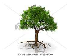 Stock Illustration of Tree with roots csp7157099 - Search Vector ...
