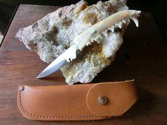 Coyote Jaw Bone, Small Stainless Steel Pen Knife,  Belt Sheaths.