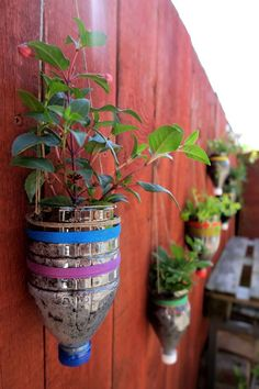 Plant inside empty containers or recyclables. Make a hanging vertical garden from soda bottles, old plastic containers, or even cardboard boxes.