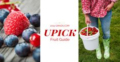 Luscious Fruits Abound in Our 2015 Summer U-Pick Fruit Guide