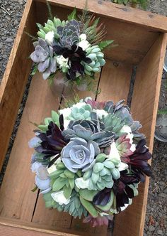 Beautiful varying greens and blues and even deep eggplant echiveria succulents, accented by fresh white mini carnations. Sharp and stunning!