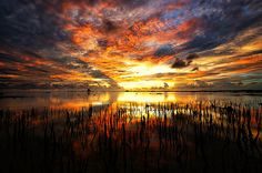 Oranges and grays at sunset Beautiful Landscape Images, Landscape Photos, Beautiful World, Beautiful Things, Beautiful People, Great Photos, Cool Pictures, Beautiful Pictures, Sunset Colors