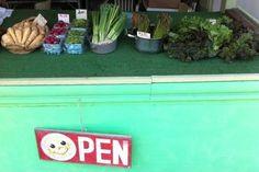 Spring Planting Tips - Prudom Farms