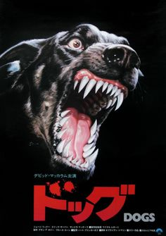"""Japanese film poster for the film """"Dogs"""". The type adds even more tension. Japanese Film, Japanese Poster, Graphic Design Posters, Graphic Design Inspiration, Vintage Movies, Vintage Posters, Movie Poster Art, Film Posters, Cover Design"""
