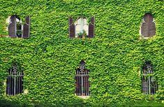 Laberinto de Horta- Barcelona | Foto: Helena Llum