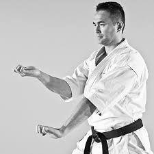 Resultado de imagen de osae karate