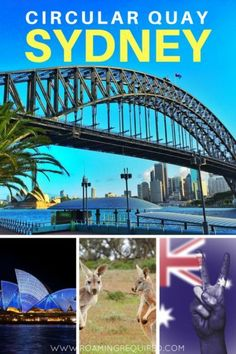 Why Circular Quay is the BEST Place in Sydney. Travel in Australia.