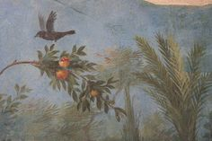 Roman fresco detail with blackbird and fruit, Villa of Livia, Prima Porta by raggi di sole.