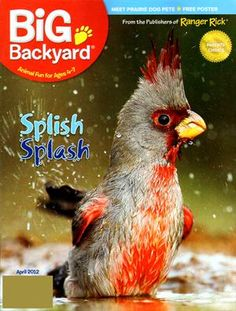 Superbe Your Big Backyard Magazine