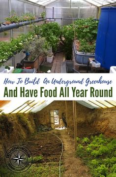 How To Build An Underground Greenhouse & Have Food All Year Round. One of the main principles involves embedding the greenhouse in the earth to take advantage of the earth's constant temperature, to store the solar energy collected during the day. Greenhouse Farming, Underground Greenhouse, Hydroponic Farming, Home Greenhouse, Greenhouse Ideas, Small Greenhouse, Portable Greenhouse, Greenhouse Wedding, Aquaponics System