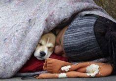 Homeless , loneliness , dog, hug, kiss , animal friends