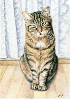 Drawing by Nicole Zeug, www.arts-and-cats.de