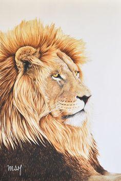 león tumbado