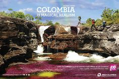 Colombia Is Magical Realism on Behance