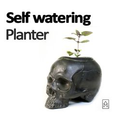 Self Watering Ceramic Skull Planter for plants that need constant moisture. Skull Planter, Self Watering Planter, Moisturizer, Planters, Ceramics, Unique Jewelry, Handmade Gifts, Etsy, Vintage