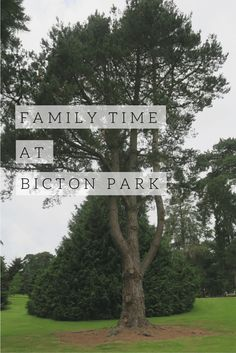The Diary Of An 'Ordinary' Mum - Family Time at Bicton Park. A family day at Bicton Park near Exeter.
