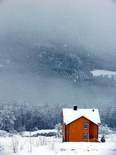 Norwegians have a long history of painting their houses in bright colours. It's easy to understand why. #orange #norway