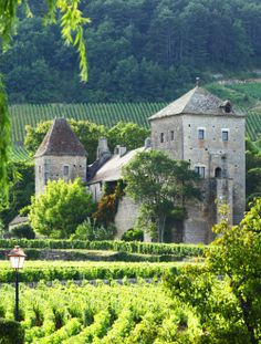 Gevrey-Chambertin, Bourgogne http://www.discoverfrance.com/european-tours-destinations/burgundy-bike-tours
