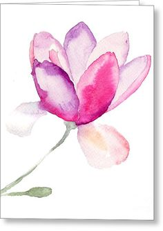 Magnolia Greeting Card by Regina Jershova
