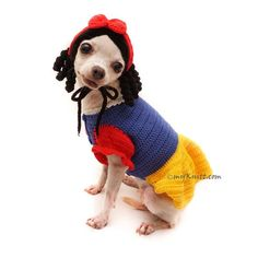 Snow White Dog Costume with Crochet Dog Hat. Any Custom Dog Clothes are welcome. Disney Dog Costume, Princess Dog Costume, Pet Halloween Costumes, Funny Costumes, Pet Costumes, Fantasia Disney, Dachshund, Chihuahua Clothes, Disney Dogs