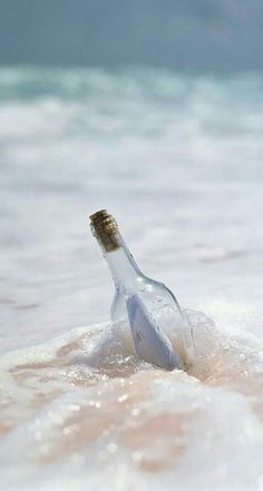 Image Nature, All Nature, Walpapers Hd, I Love The Beach, Message In A Bottle, Ocean Beach, Sea Shells, Seaside, Surfing