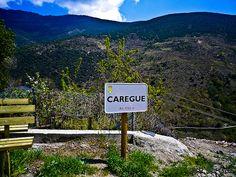 Caregue